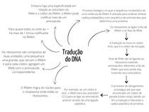 Tradução DNA