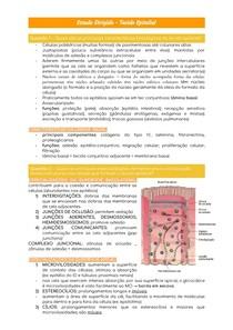 Estudo Dirigido - Tecido Epitelial