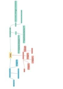 mapa mental + informações sobre AINES