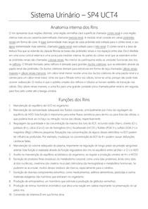 TUTORIA 5 UNIDADE 4 - SISTEMA URINÁRIO
