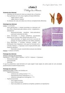 Patologia do Sistema Endócrino