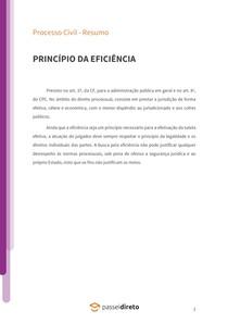 Princípio da eficiência - Resumo