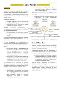 Histologia - TECIDO NERVOSO