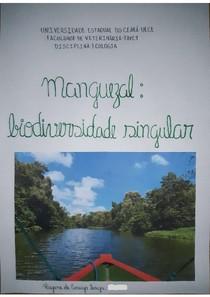 Portfólio - Manguezal