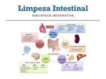 LIMPEZA INTESTINAL 3 DIAS. BIBLIOTECA INTEGRATIVA