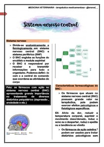 Sistema nervoso central - terapeutica