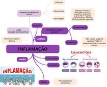 Mapa Mental-Inflamação