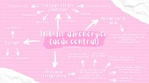 Mapa mental Inibidores adrenérgicos (ação central)
