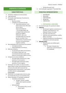 07 - AMINOGLICOSÍDEOS