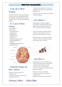 Nervos Cranianos - Resumo