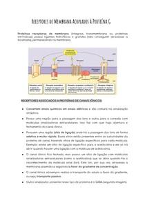 Receptores de Membrana Acoplados à Proteína G + Receptor de canal iônico