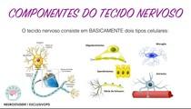 COMPONENTES DO TECIDO NERVOSO