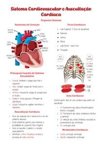 Sistema Cardiovascular e Auscultação Cardíaca
