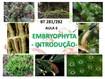BT281 282_Aula 6_Introducao as Embryophyta