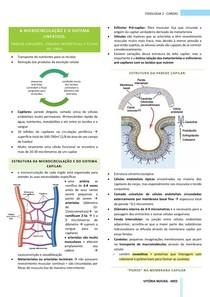 Fisiologia Cardiovascular: microcirculação e sistema linfático