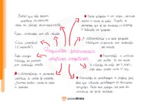 Teorias da exposição e da asserção - Mapa Mental