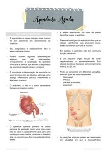 Apendicite Aguda (e sinais do exame clínico)