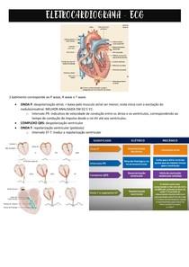 Eletrocardiograma - como analisar