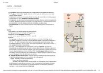 lipólise e cetogênese