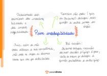 Princípio da indelegabilidade - Mapa Mental