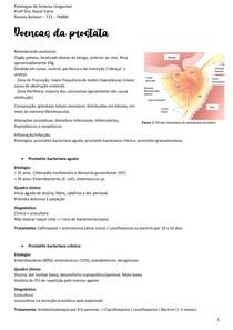 Doenças da próstata - HIPERPLASIA PROTÁTICA BENIGNA, CÂNCER DE PRÓSTATA
