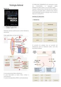 Fisiologia Adrenal