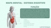 Mapa mental do sistema digestivo