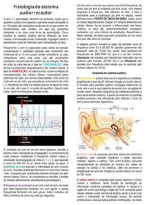 Fisiologia do sistema auditivo