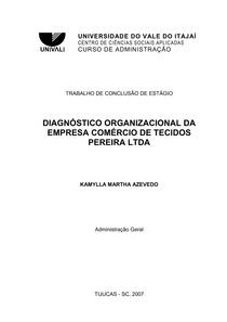 Kamylla Martha Azevedo - Diagnóstico Organizacional