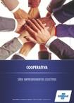 empreendimentos coletivos cooperativa