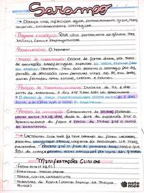 Resumo, Sarampo pt1