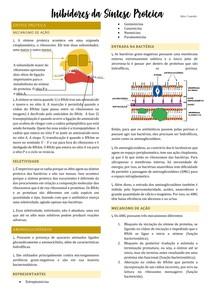 Antibióticos Inibidores da Síntese Proteica