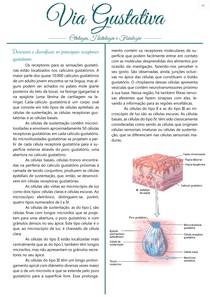 Via Gustativa - Citologia, Histologia e Fisiologia
