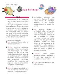 Lista de exercícios sobre fungos, bactérias e vírus