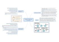 Resumo Inibição e Regulação Enzimática