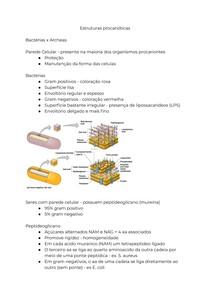 Estruturas procarióticas
