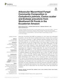 Açai e micorrizas