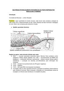 Bactérias Patogênicas do Trato Reprodutor Masculino e Feminino
