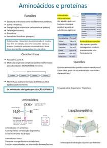 Aminonoácidos/ proteinas, enzimas,vitaminas e carboidratos