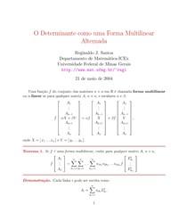 O Determinante como uma Forma Multilinear Alternada