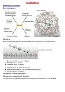 Glicogênese e glicogenólise