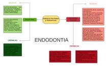 DIAGRAMA ENDODONTIA - doenças pulpares