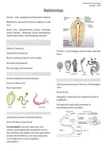 Epidemiologia - Helmintos, Tenia, Schistosomose