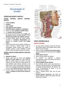 Vascularização do Encéfalo - Neuroanatomia
