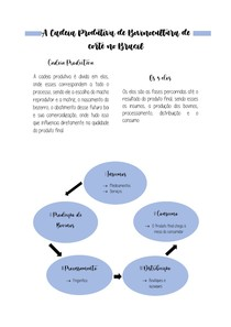 A Cadeia Produtiva de Bovinocultura de corte no Brasil