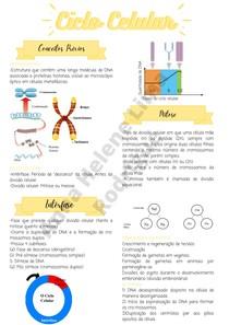Mitose e Meiose - Ciclo celular
