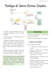 Fisiologia do Sistema Nervoso Simpático