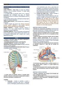 ANAT01 - PERICÁRDIO E MORFOLOGIA EXTERNA DO CORAÇÃO (P2)