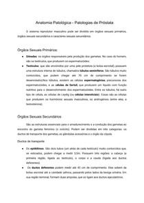 Anatomia Patológica - Patologias de Próstata