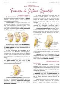 Embriologia do Sistema Reprodutor
